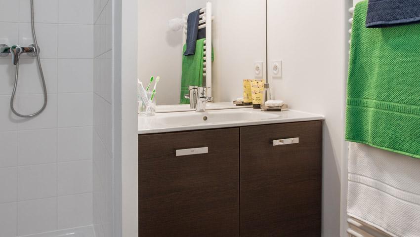 appartement colocation lyon